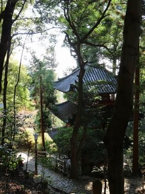 松尾寺・三重塔3