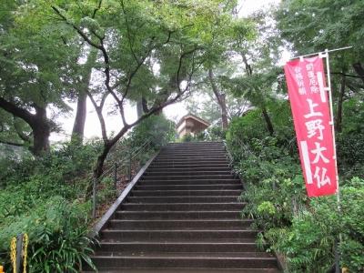 上野大仏・石段