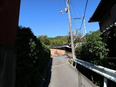 海住山寺への道