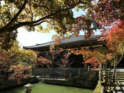 播州清水寺・放生池越しの大講堂