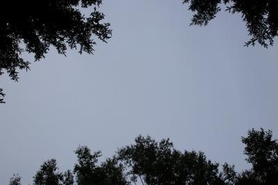 阿寒の曇り空