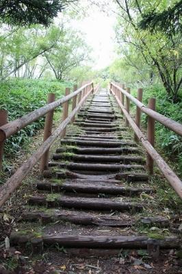 コッタロ展望台の階段