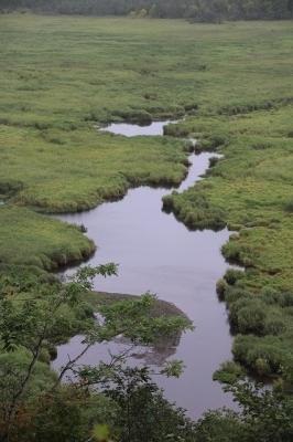 コッタロ湿原展望台からの眺め2