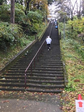 2017-11-04 春日山神社の階段