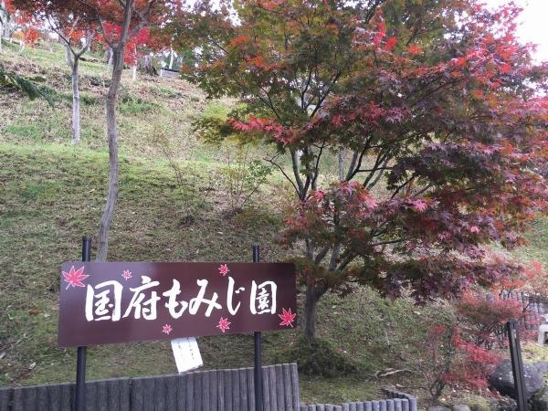 2017-11-09もみじ園1