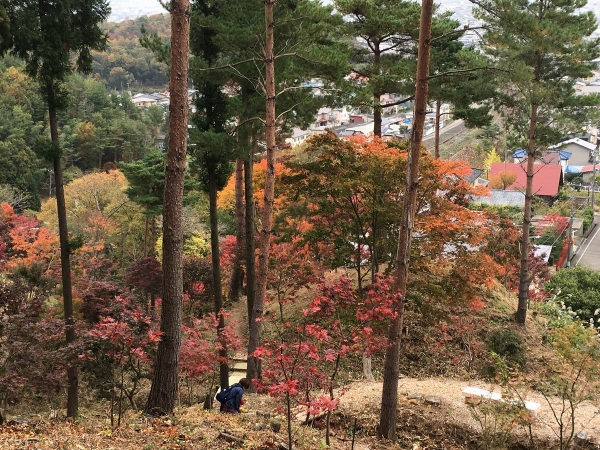 2017-11-09 もみじ園4
