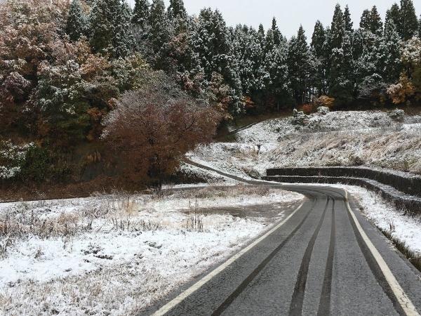 2017-11-16 雪景色