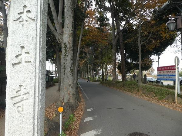 P1390074.jpg