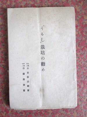 nanohanabunko2000img480x64015033907.jpg