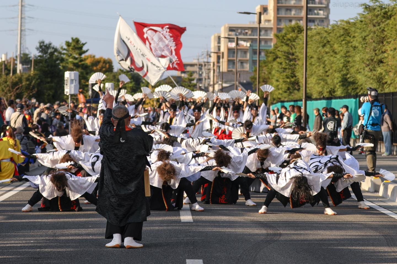 kabuto2017soka-16.jpg