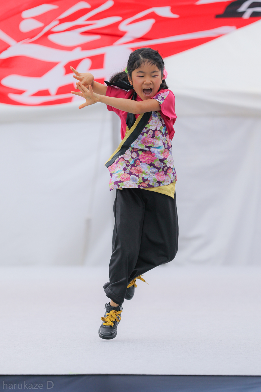 kawasaki2017mai01-28.jpg