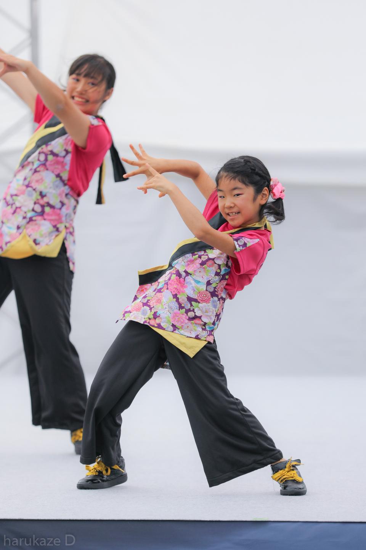 kawasaki2017mai01-31.jpg