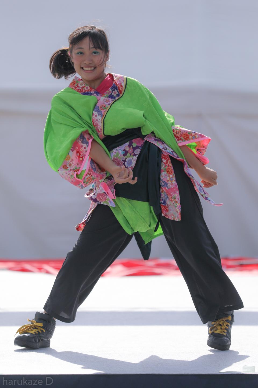 kawasaki2017mai02-31.jpg