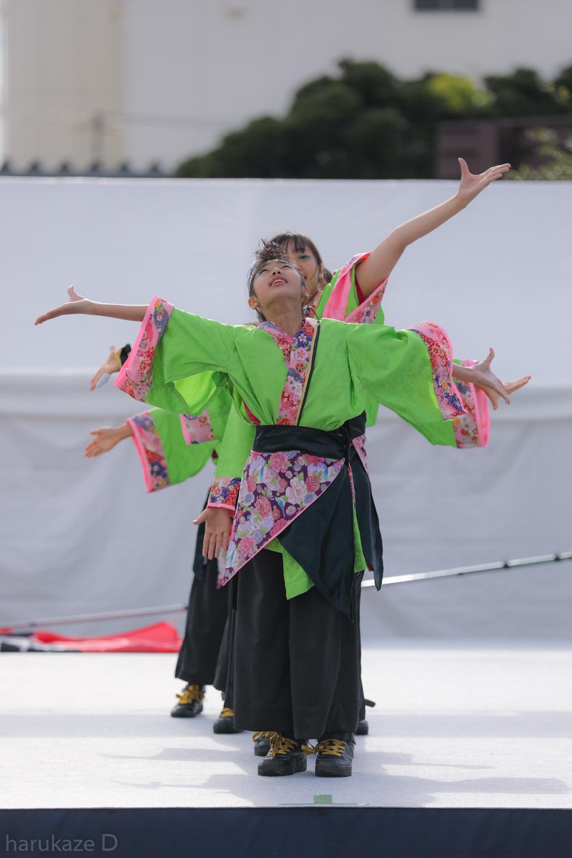 kawasaki2017mai02-43.jpg
