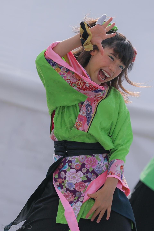 kawasaki2017mai02-47.jpg