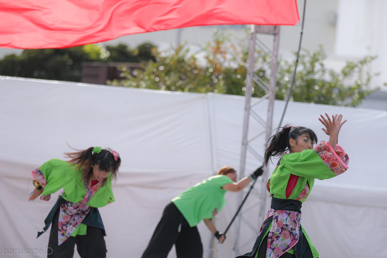 kawasaki2017mai02-48.jpg