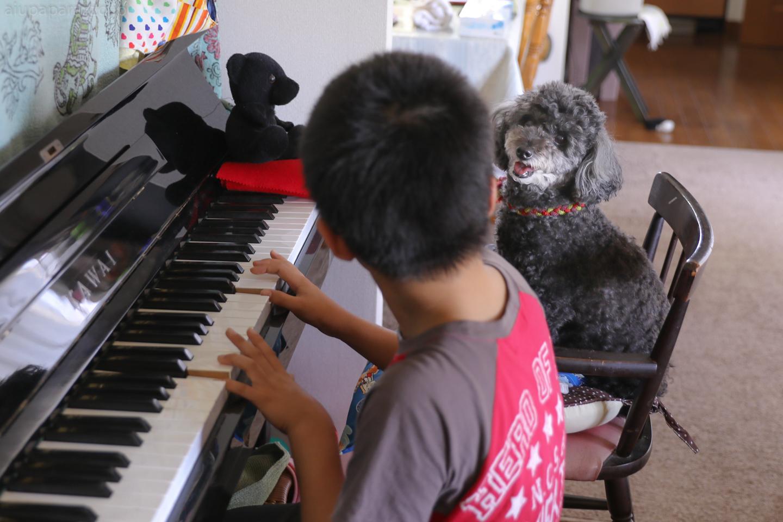 piano2017nana-1.jpg