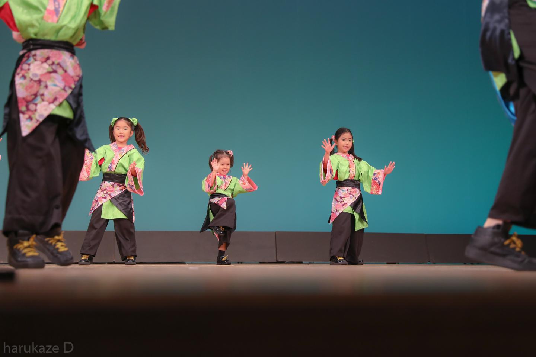 sazae2017itabun-9.jpg