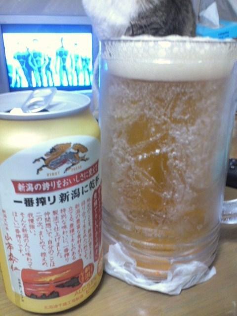 キリン 一番搾り 新潟に乾杯