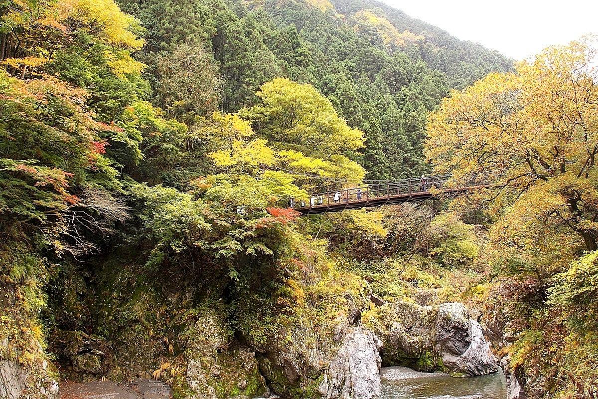 IMG_6182渓谷秋景12