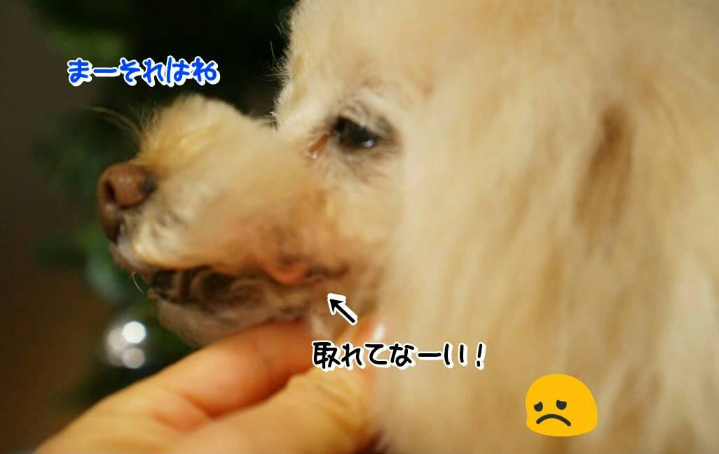 Image_5fec70a.jpg
