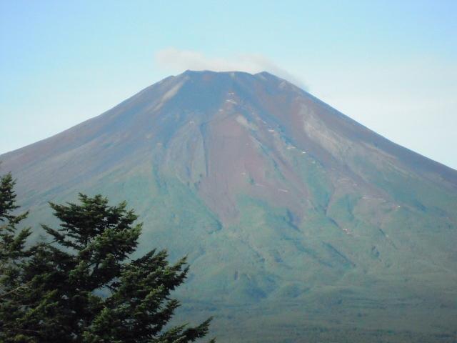 ナイス富士