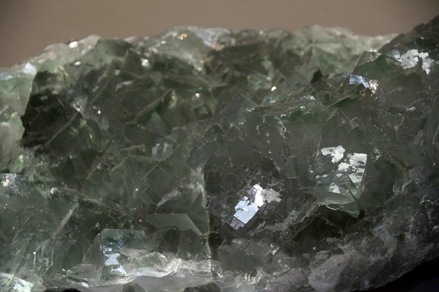特別・石 (8)