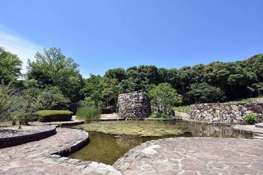 春の泉 (7)