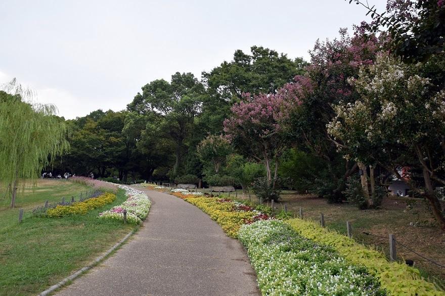 長居秋2017 (0)