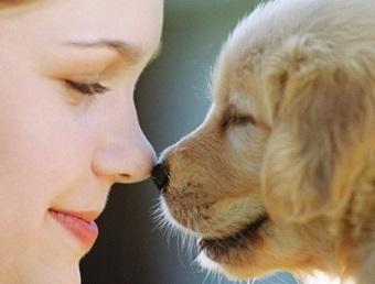 ペットとのキス
