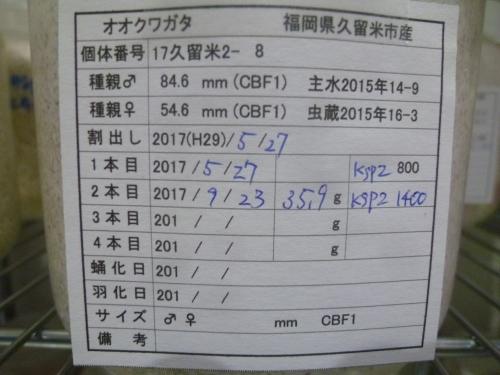 P1040552.jpg