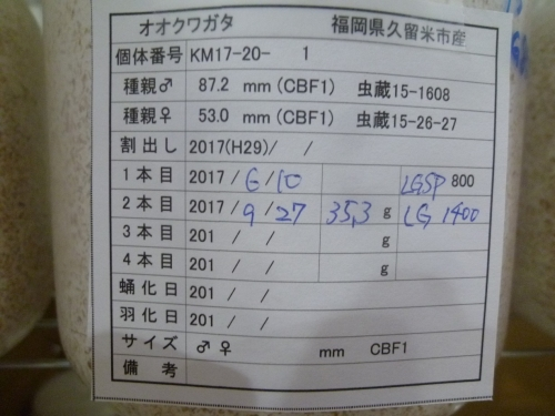 P1040575.jpg