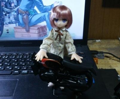 DSC_0065gyi.jpg