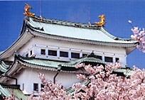 名古屋城天守閣鯱
