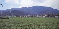 椿大神社入道ヶ岳