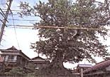 野村の一里塚