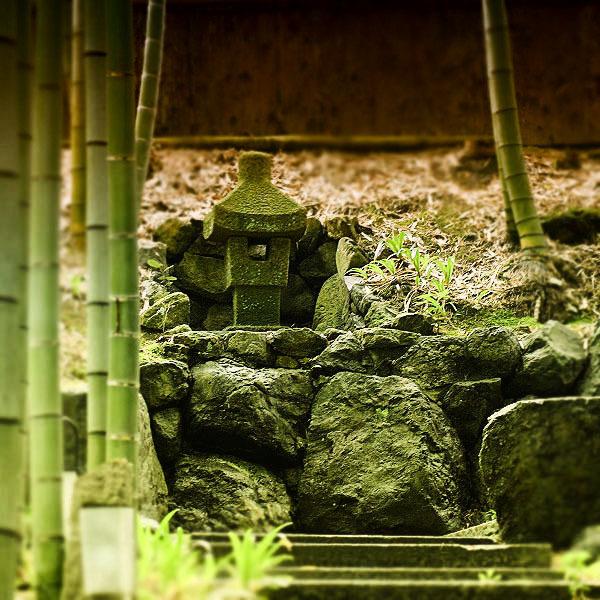 竹林と石像