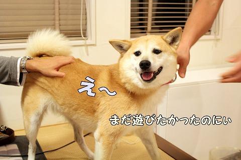 s-taizyou170824-IMG_1362