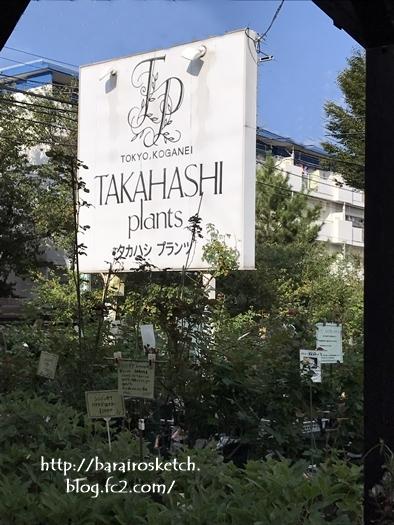 タカハシP201710-11