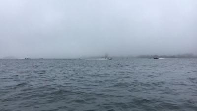 霧の琵琶湖南湖'(YouTubeムービー)