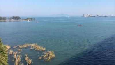 琵琶湖大橋西詰めから眺めた北湖(11月3日13時頃)