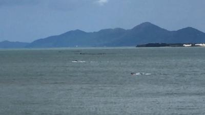 琵琶湖大橋西詰めから眺めた北湖(11月4日13時15分頃)