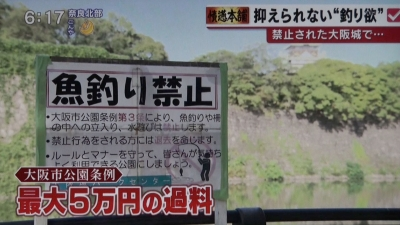 釣り禁止 罰金5万円でも釣り人が絶えない大阪城の壕