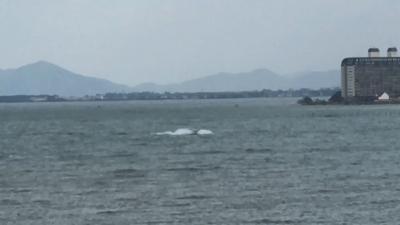 プレジャーボートが強風の琵琶湖を爆走!!(YouTubeムービー)
