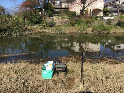 台風2連発から8日目 だいぶ川の水位が下がってやっと釣りができるようになりました