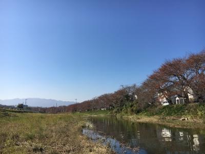 大津市堅田付近は快晴微風の絶好の釣り日和(11月6日13時頃)