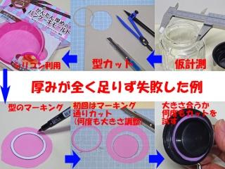 seal_10_DSC05797a1.jpg