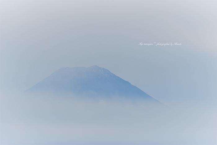 tamayura-初冠雪9854