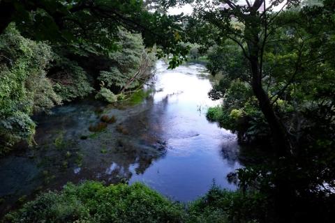 14a柿田川公園第一展望台