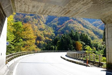 21富岡へ下り